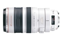 - Canon EF 100-400mm f/4.5-5.6L IS USM Lens